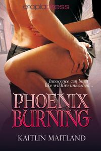 PhoenixBurning_ByKaitlinMaitland_200x300