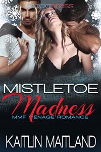 MistletoeMadness-ByKaitlinMaitland-200x300